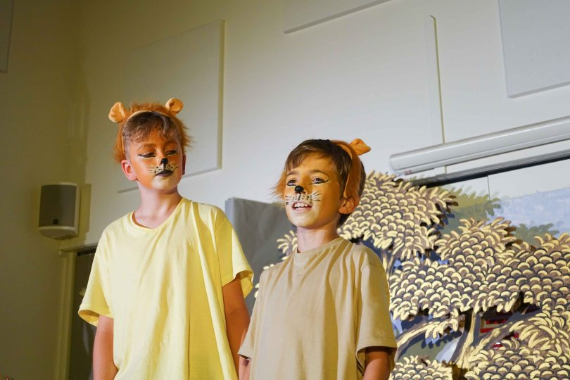 Y6 lion king 2017 (116 of 1002)