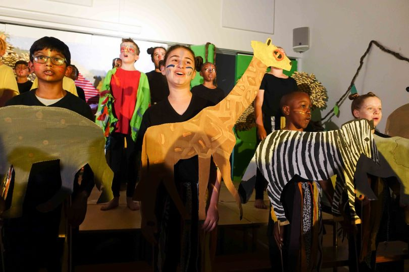 Y6 lion king 2017 (58 of 1002)