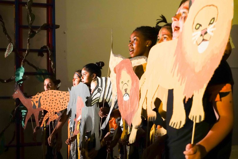 Y6 lion king 2017 (79 of 1002)