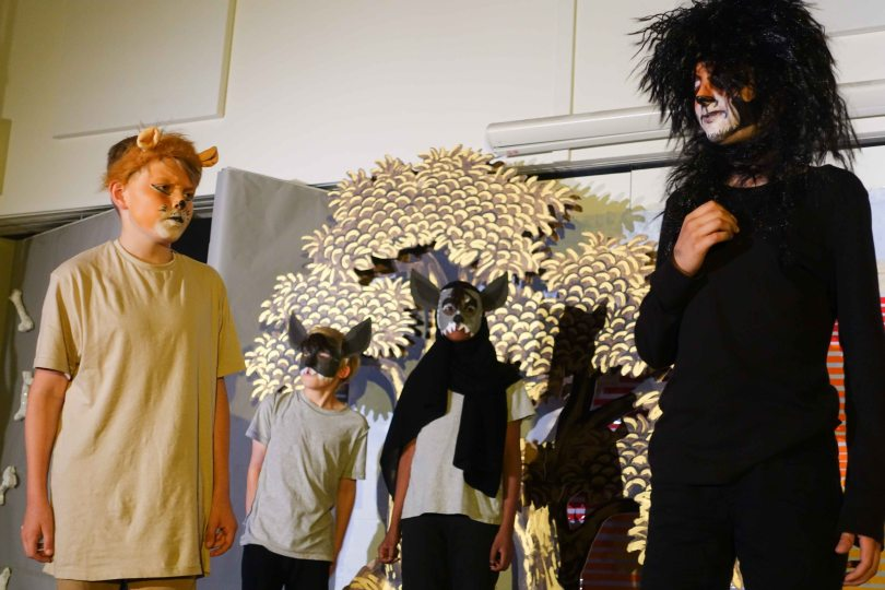 Y6 lion king 2017 (852 of 1002)